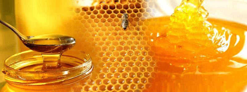 Приборы для анализа меда