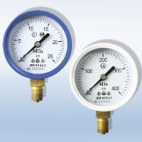 Манометр для кислорода ДМ 05 100-01-О2 (0...600 кПа)