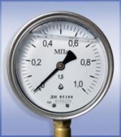 Манометр ДМ 05100 Г М (0...60 МПа)